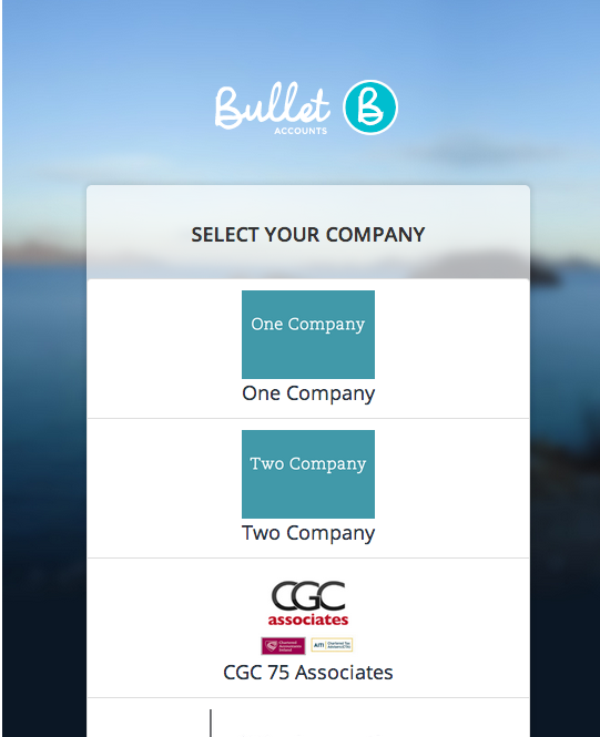 How Do I Add Multi Company Accounting To Bullet