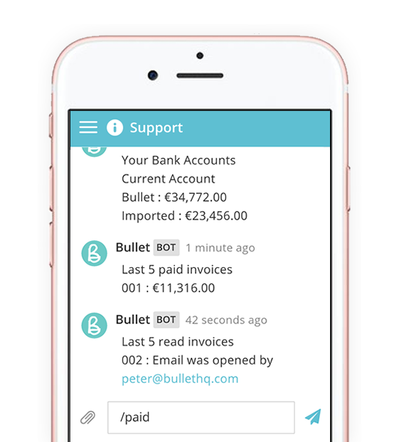 Live, Free, Instant Chat Support On Bullet Free Accounting